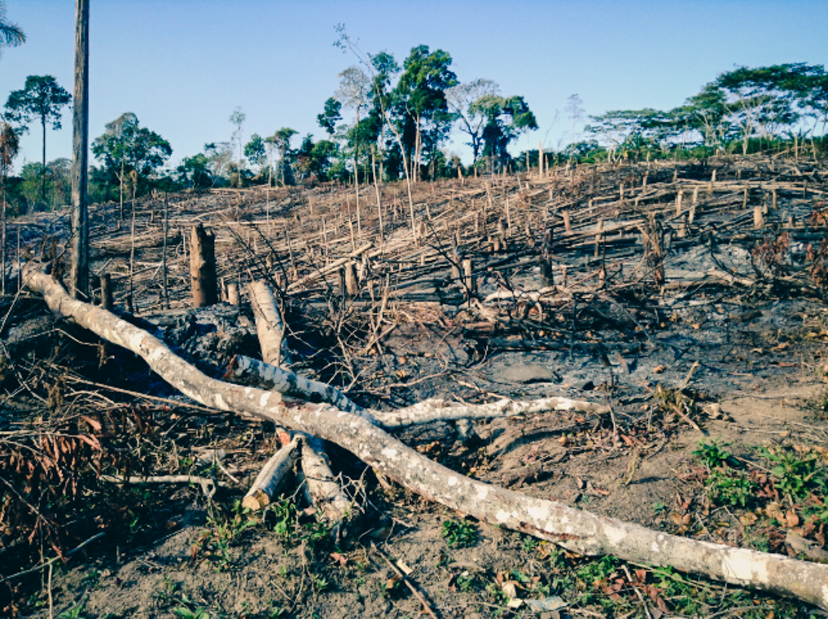 Effects of deforestation near Peru mission