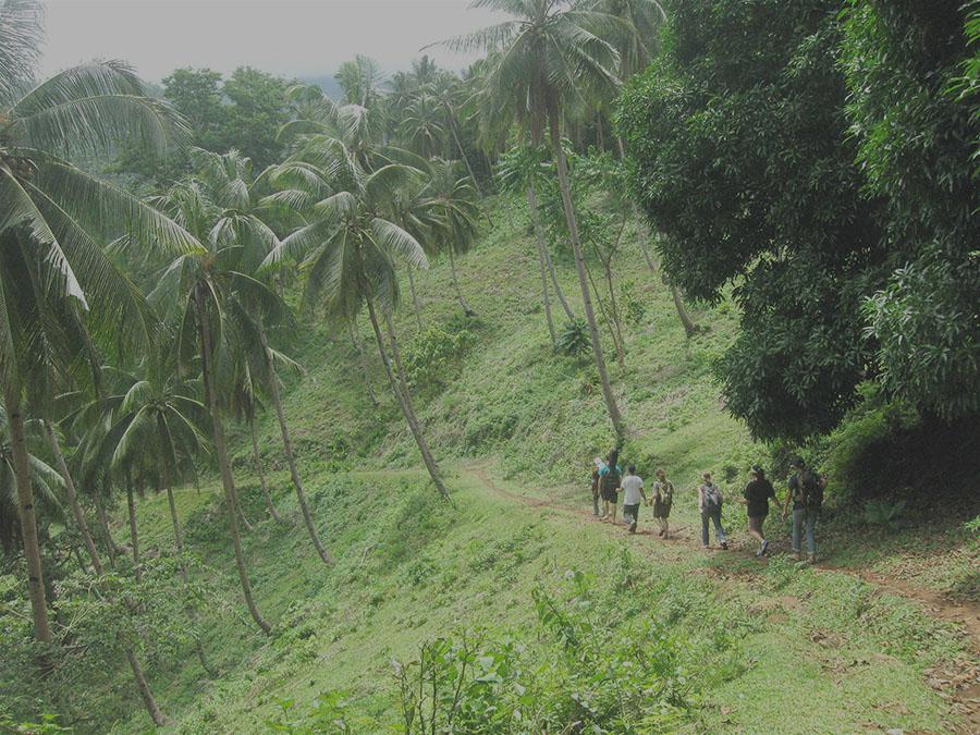 Summer School of Missionary Evangelization