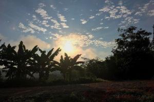 Pucacaca-sunrise3
